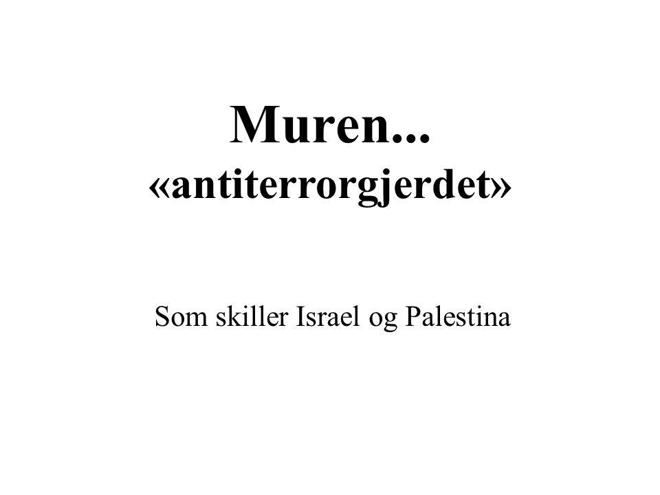 Muren... «antiterrorgjerdet» Som skiller Israel og Palestina