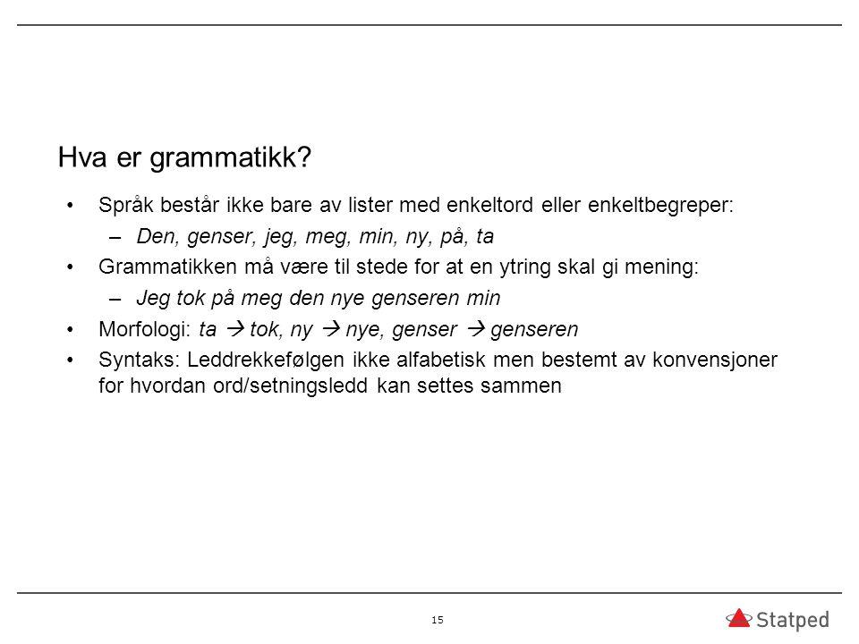 Hva er grammatikk? Språk består ikke bare av lister med enkeltord eller enkeltbegreper: –Den, genser, jeg, meg, min, ny, på, ta Grammatikken må være t