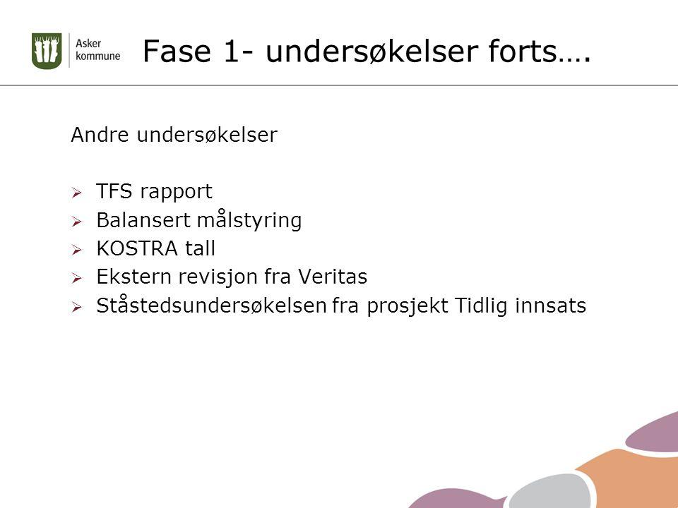 Andre undersøkelser  TFS rapport  Balansert målstyring  KOSTRA tall  Ekstern revisjon fra Veritas  Ståstedsundersøkelsen fra prosjekt Tidlig innsats Fase 1- undersøkelser forts….