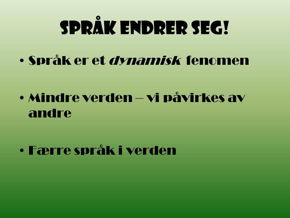 To av språksynene vinner fram Fornorskingslinjen (Knud Knudsen) Landsmålet (Ivar Aasen) Begge fikk støtte fra forfattere og språkforskere.