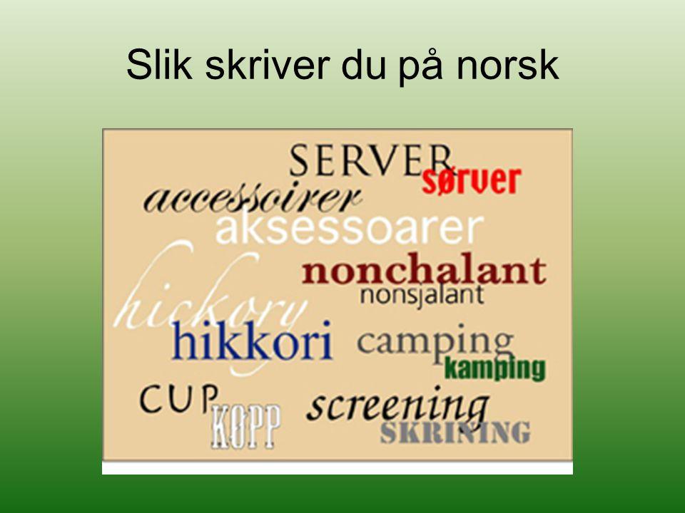 Beholde dansk som skriftspråk Embetsmennene var for dette Holde tett kontakt med Danmark Så på Danmark som en kulturnasjon Welhaven – støttet dette synet