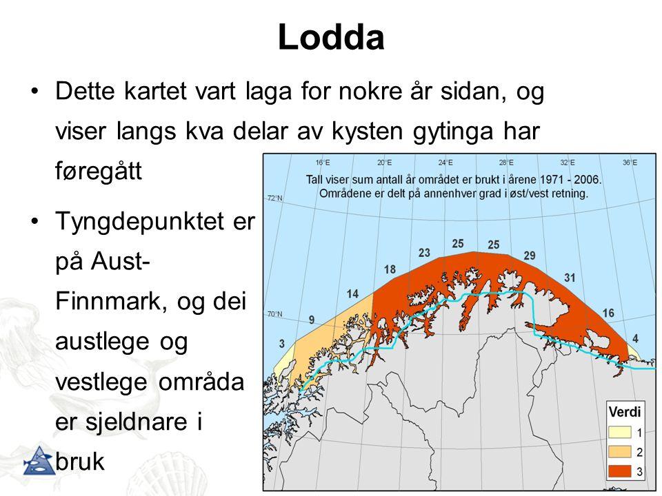 Lodda Dette kartet vart laga for nokre år sidan, og viser langs kva delar av kysten gytinga har føregått Tyngdepunktet er på Aust- Finnmark, og dei au