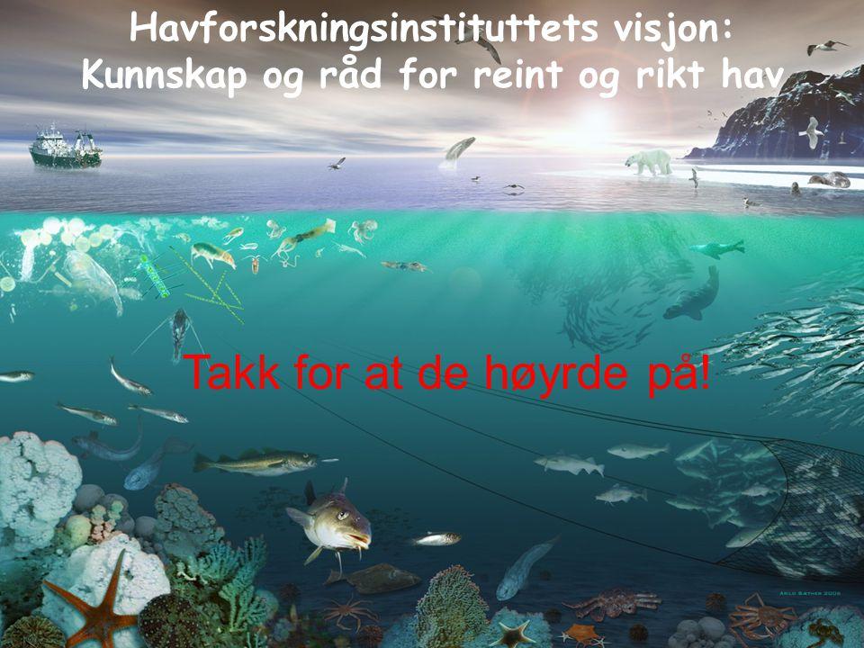 Havforskningsinstituttets visjon: Kunnskap og råd for reint og rikt hav Takk for at de høyrde på!