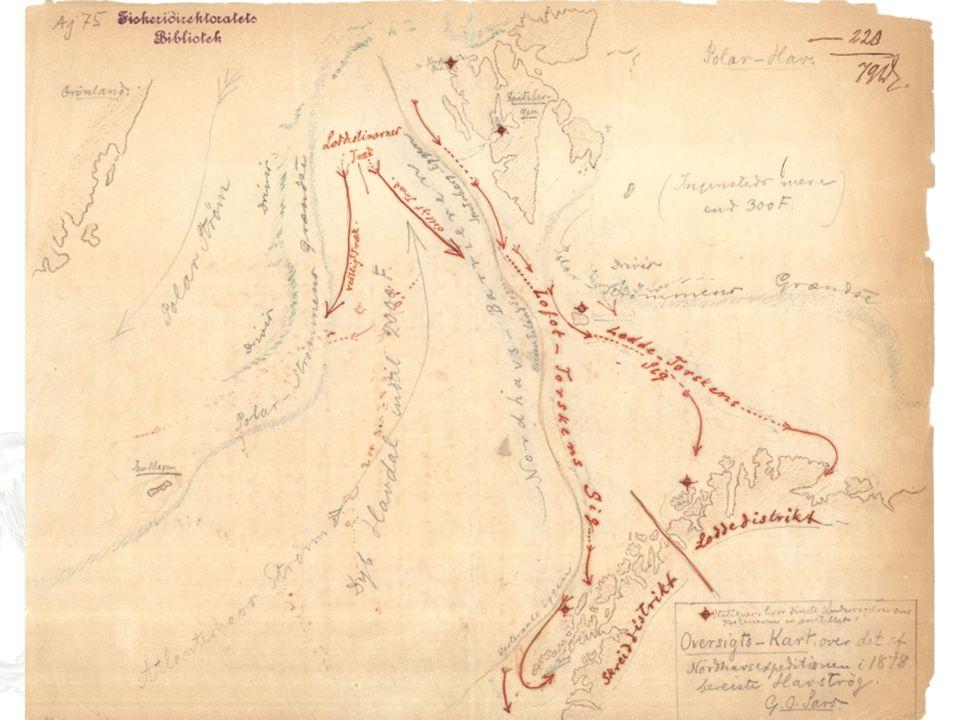 Kva veit vi om vandring? Først litt historie: –G.O. Sars konkluderte med at torsken han observerte ved Svalbard og Bjørnøya måtte vera den same som va