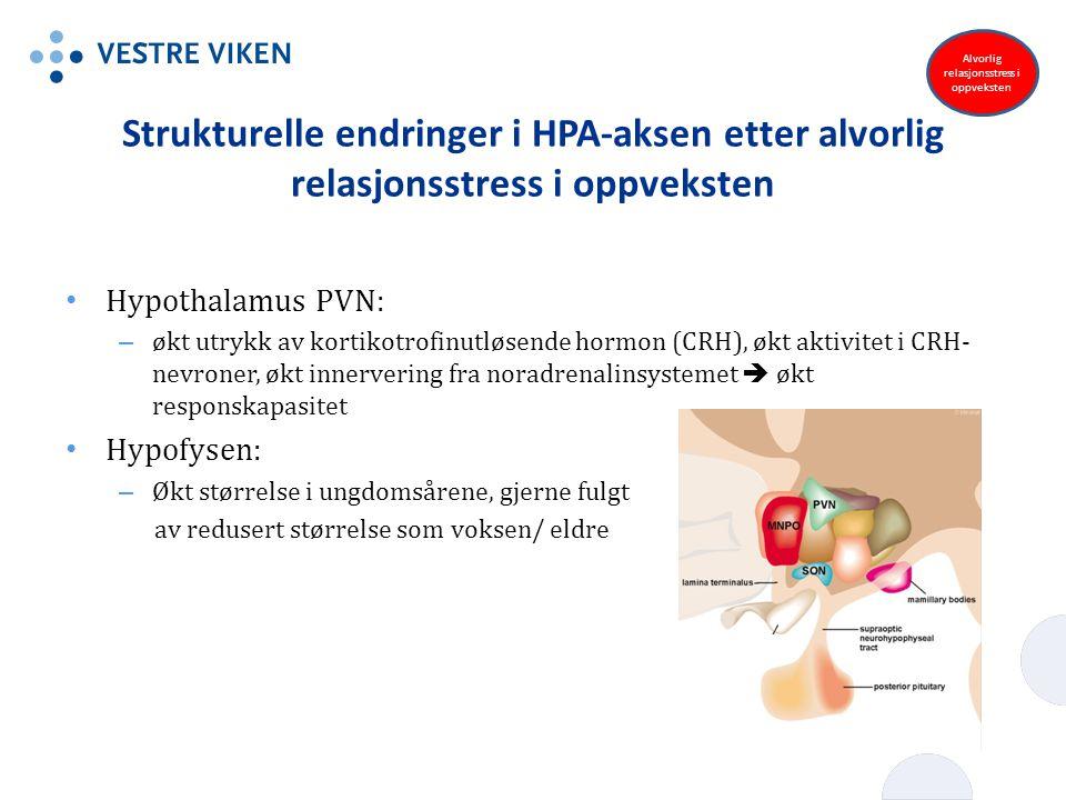 Strukturelle endringer i HPA-aksen etter alvorlig relasjonsstress i oppveksten Hypothalamus PVN: – økt utrykk av kortikotrofinutløsende hormon (CRH),