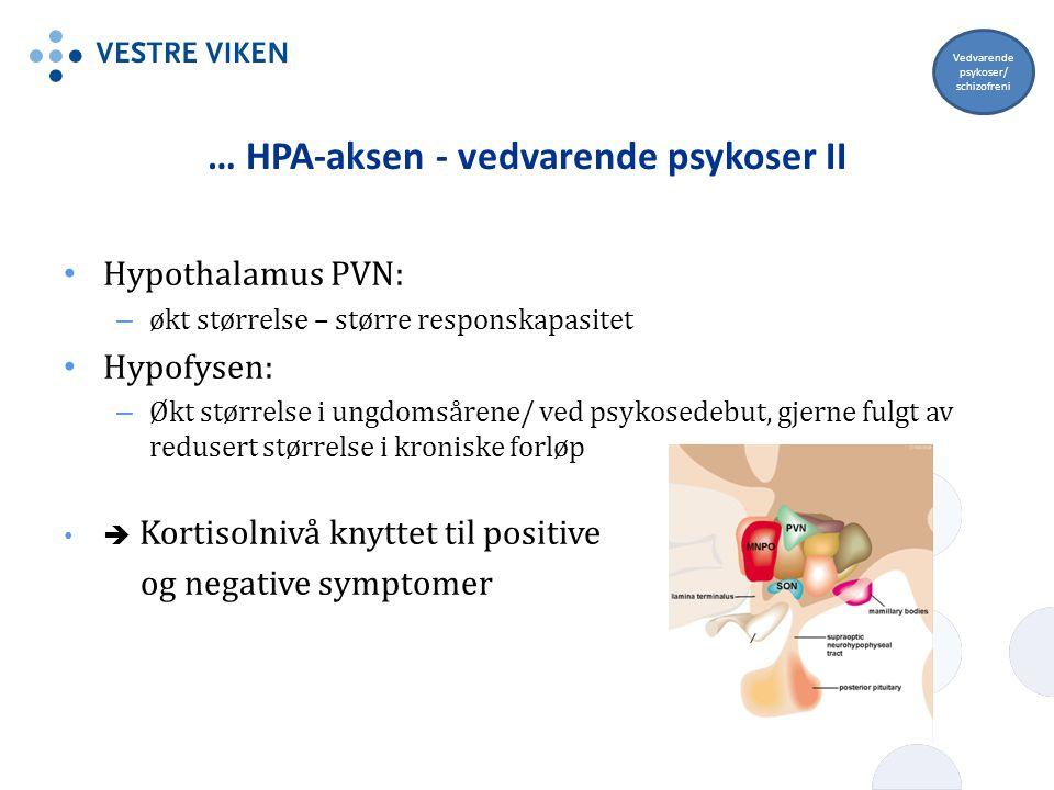 … HPA-aksen - vedvarende psykoser II Hypothalamus PVN: – økt størrelse – større responskapasitet Hypofysen: – Økt størrelse i ungdomsårene/ ved psykos