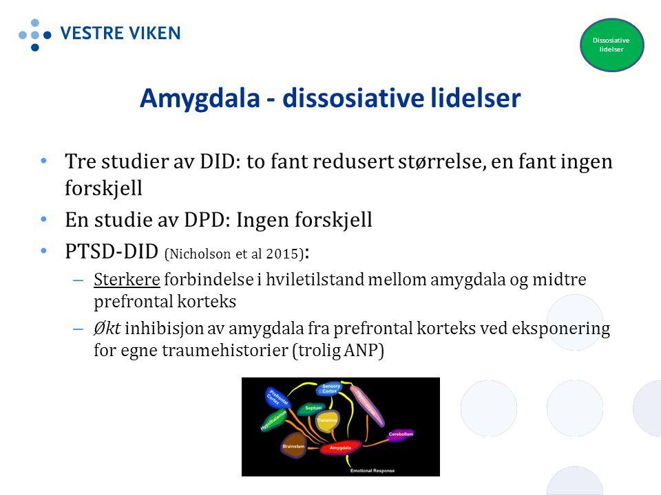 Amygdala - dissosiative lidelser Tre studier av DID: to fant redusert størrelse, en fant ingen forskjell En studie av DPD: Ingen forskjell PTSD-DID (N
