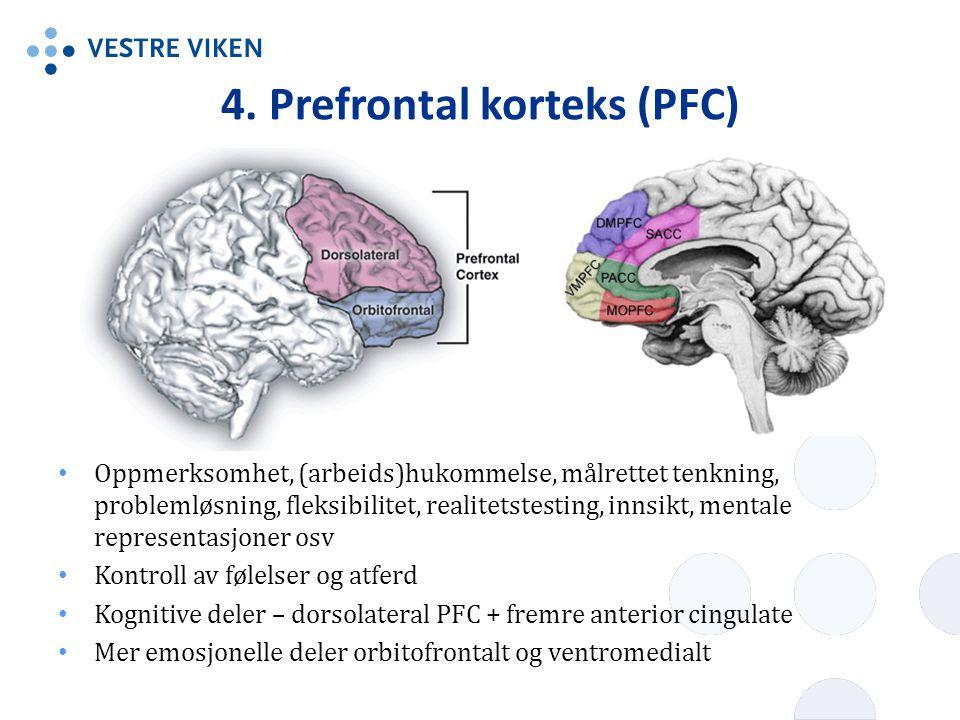 4. Prefrontal korteks (PFC) Oppmerksomhet, (arbeids)hukommelse, målrettet tenkning, problemløsning, fleksibilitet, realitetstesting, innsikt, mentale