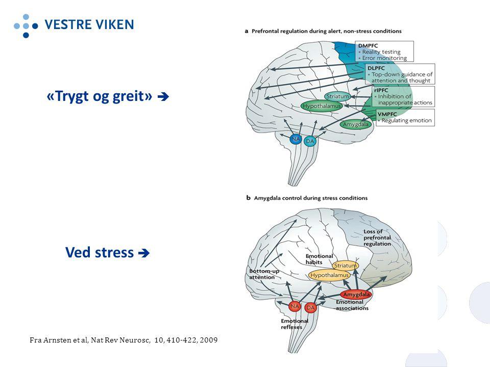 «Trygt og greit»  Ved stress  Fra Arnsten et al, Nat Rev Neurosc, 10, 410-422, 2009