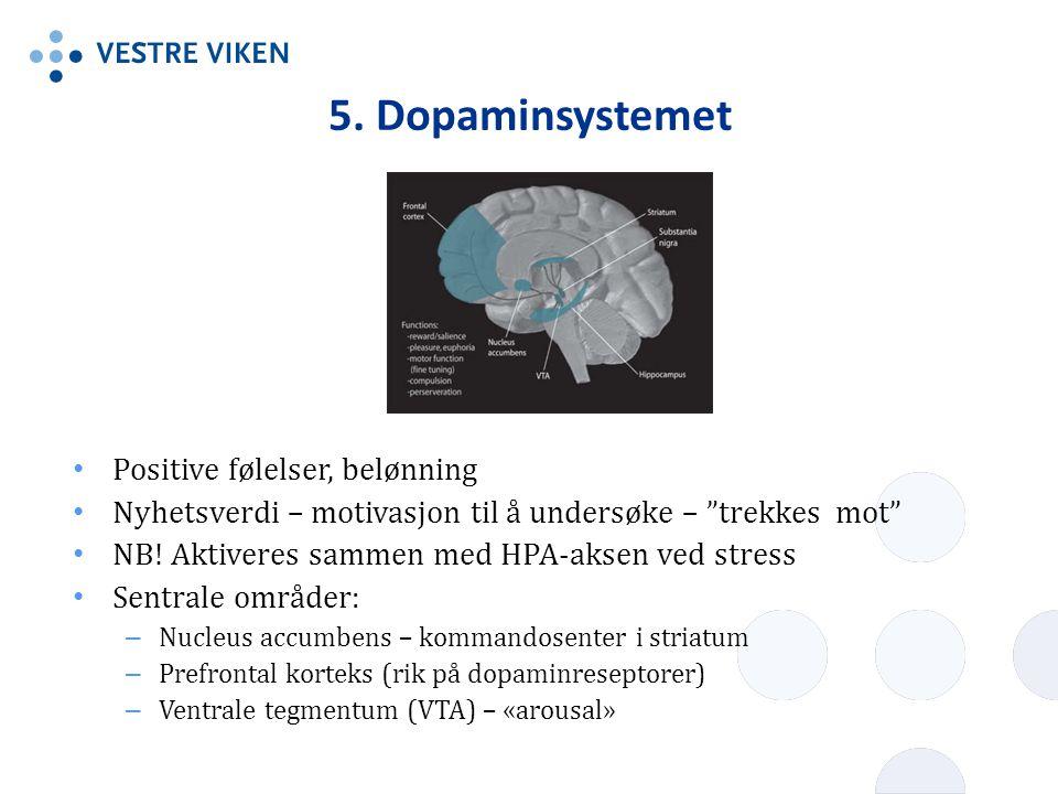 """5. Dopaminsystemet Positive følelser, belønning Nyhetsverdi – motivasjon til å undersøke – """"trekkes mot"""" NB! Aktiveres sammen med HPA-aksen ved stress"""