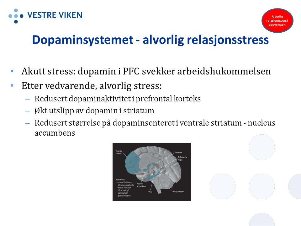 Dopaminsystemet - alvorlig relasjonsstress Akutt stress: dopamin i PFC svekker arbeidshukommelsen Etter vedvarende, alvorlig stress: – Redusert dopami