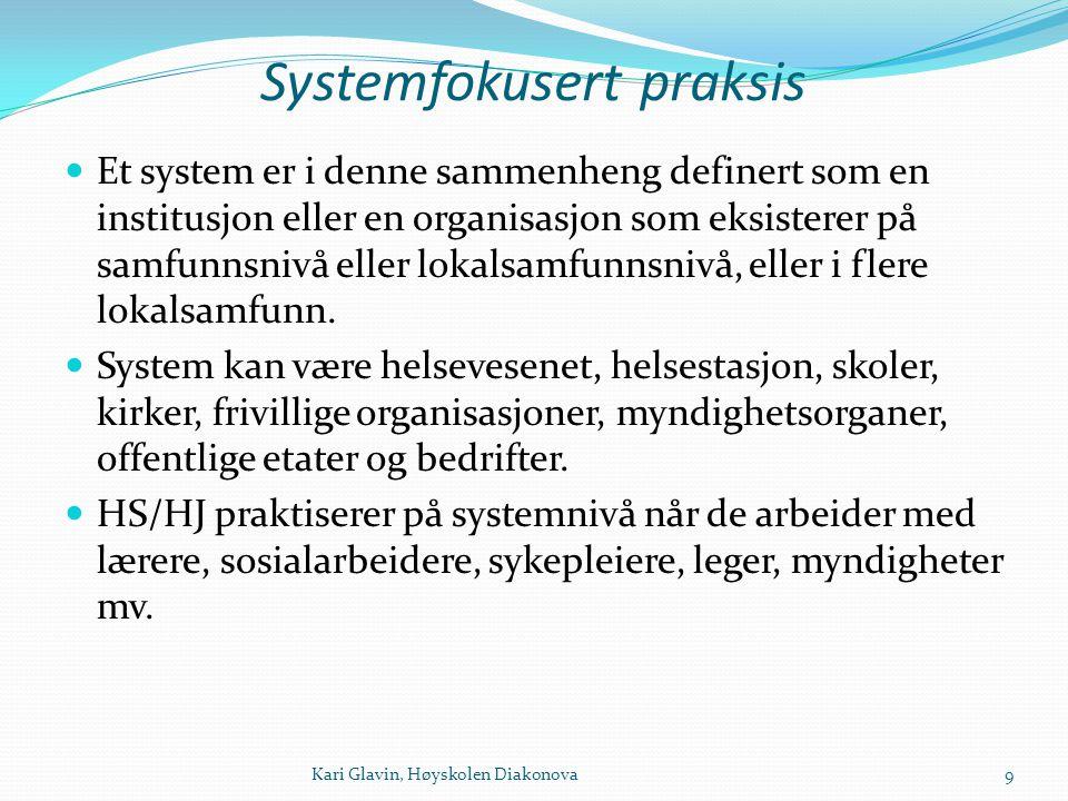 Systemfokusert praksis Et system er i denne sammenheng definert som en institusjon eller en organisasjon som eksisterer på samfunnsnivå eller lokalsam