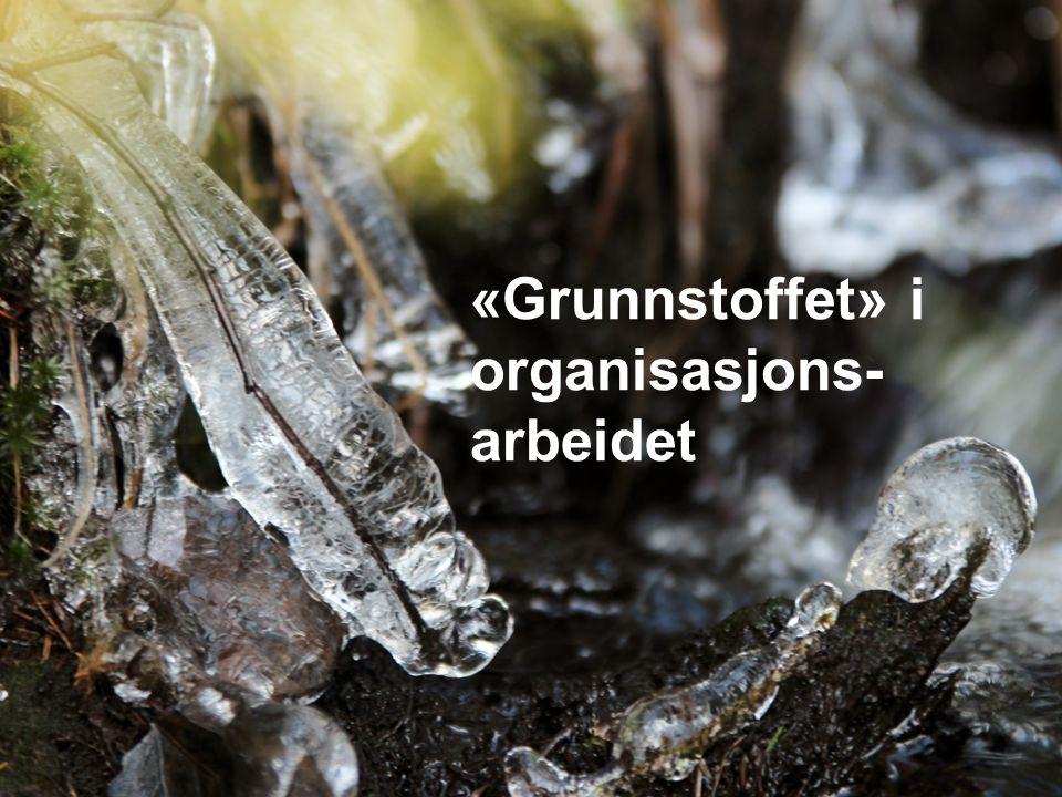 En grunnleggende aktivitet «Grunnstoffet» i organisasjons- arbeidet
