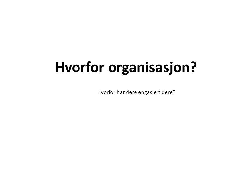 Hvorfor organisasjon Hvorfor har dere engasjert dere