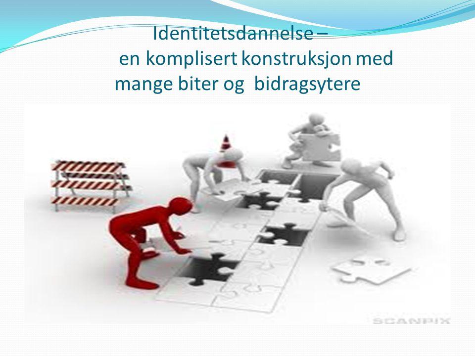 Identitetsdannelse – en komplisert konstruksjon med mange biter og bidragsytere