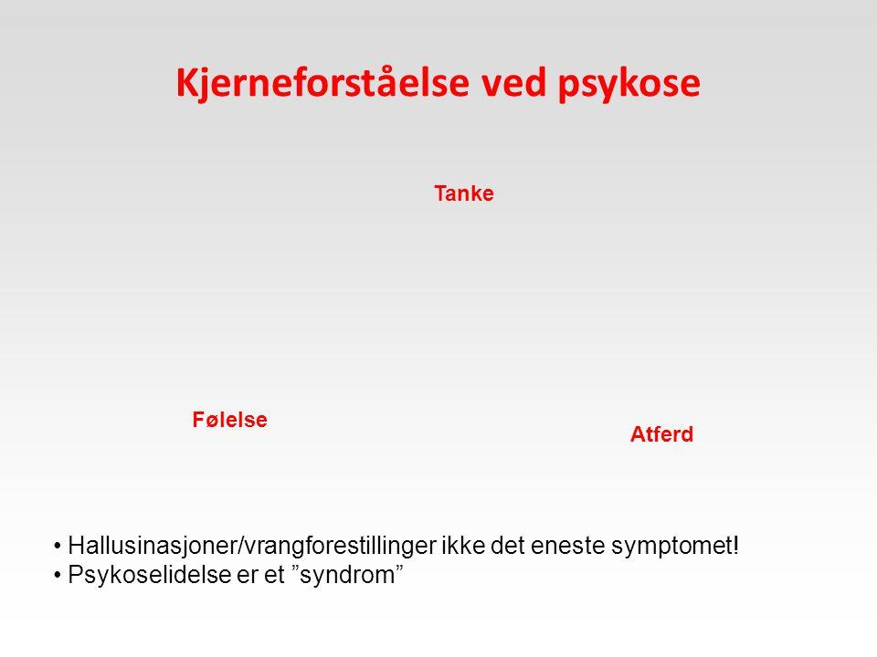 """Kjerneforståelse ved psykose Tanke Følelse Atferd Hallusinasjoner/vrangforestillinger ikke det eneste symptomet! Psykoselidelse er et """"syndrom"""""""
