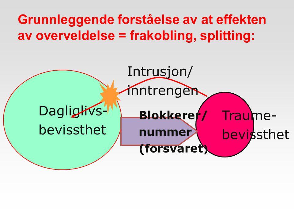 Traume- bevissthet Dagliglivs- bevissthet Blokkerer/ nummer (forsvaret ) Intrusjon/ inntrengen Grunnleggende forståelse av at effekten av overveldelse