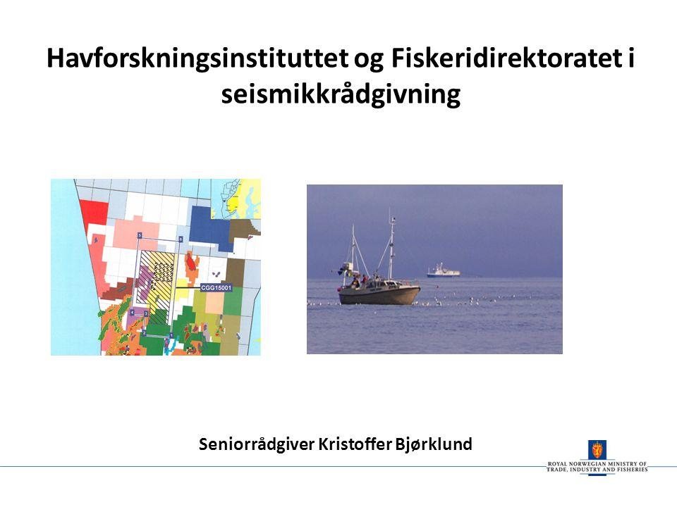 Havforskningsinstituttet og Fiskeridirektoratet i seismikkrådgivning Seniorrådgiver Kristoffer Bjørklund