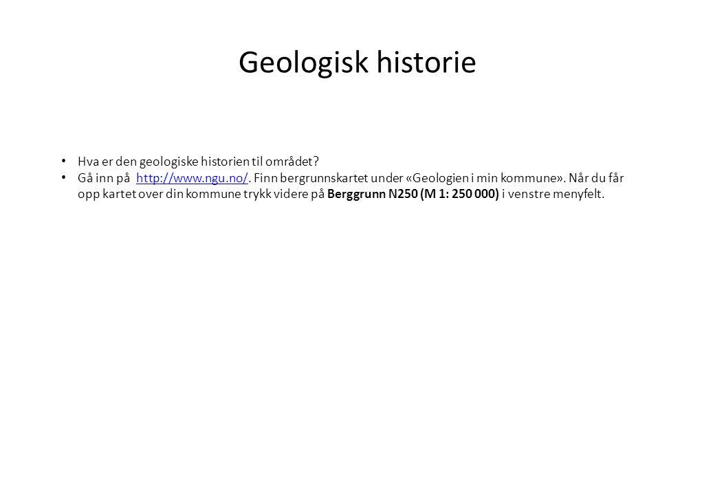 Geologisk historie Hva er den geologiske historien til området.