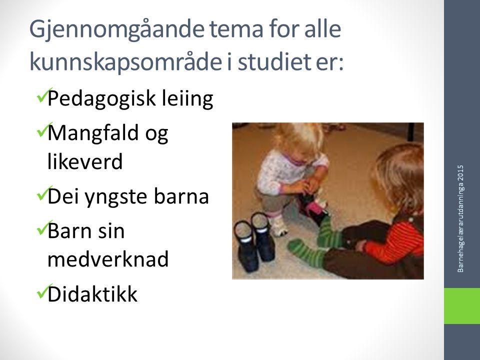 Gjennomgåande tema for alle kunnskapsområde i studiet er: Pedagogisk leiing Mangfald og likeverd Dei yngste barna Barn sin medverknad Didaktikk Barnehagelærarutdanninga 2015