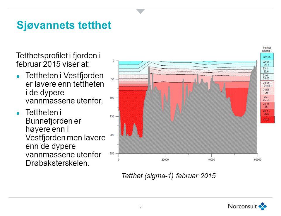 Sjøvannets tetthet 9 Tetthetsprofilet i fjorden i februar 2015 viser at: ● Tettheten i Vestfjorden er lavere enn tettheten i de dypere vannmassene utenfor.