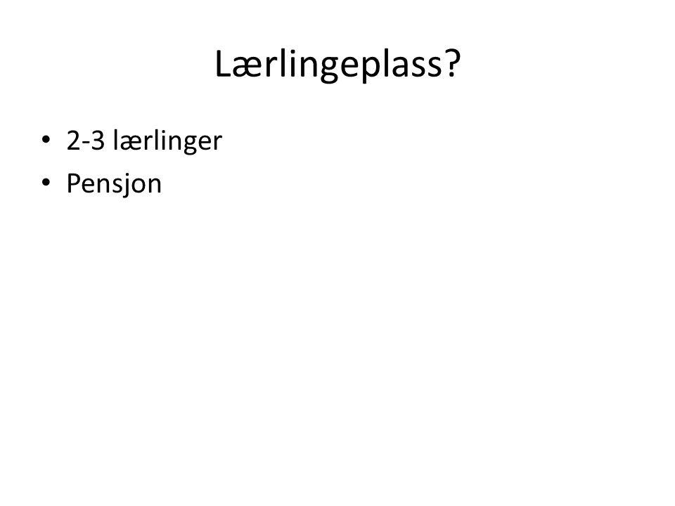 Lærlingeplass 2-3 lærlinger Pensjon