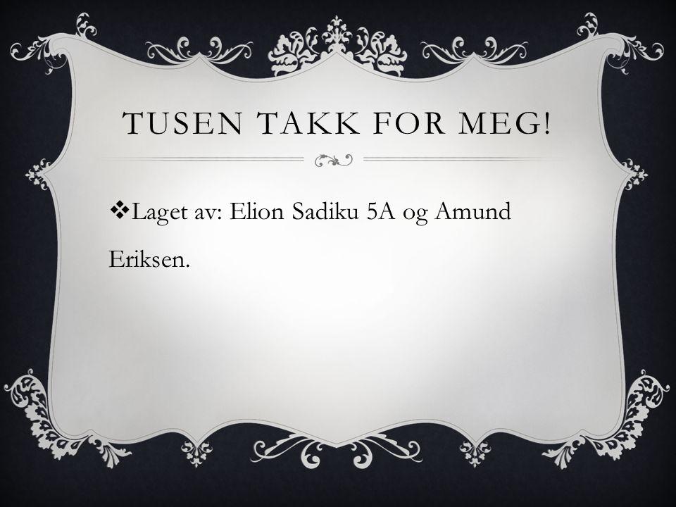 TUSEN TAKK FOR MEG!  Laget av: Elion Sadiku 5A og Amund Eriksen.