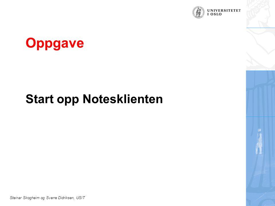 Steinar Skogheim og Sverre Didriksen, USIT Oppgave Start opp Notesklienten