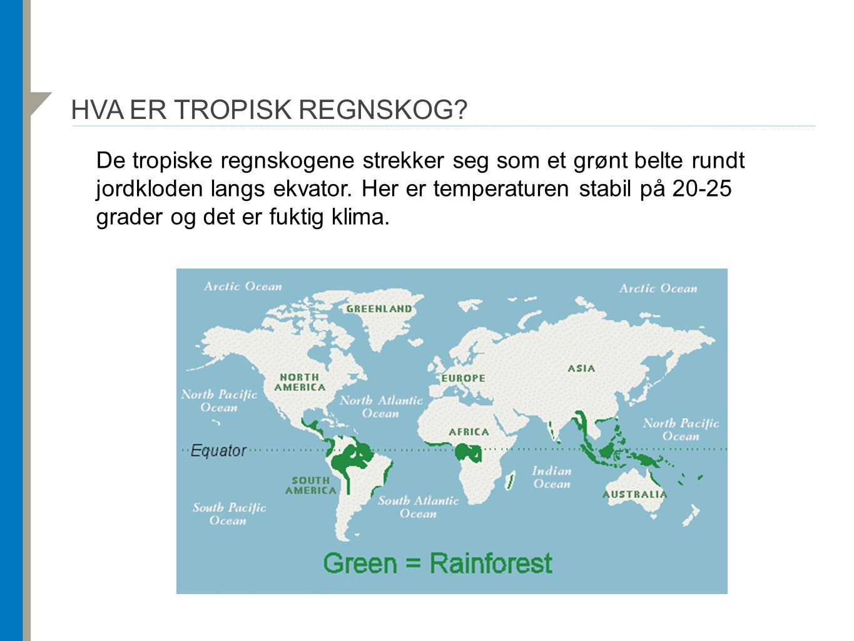 HVA ER TROPISK REGNSKOG? De tropiske regnskogene strekker seg som et grønt belte rundt jordkloden langs ekvator. Her er temperaturen stabil på 20-25 g