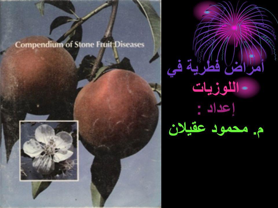 أمراض فطرية في اللوزيات إعداد : م. محمود عقيلان