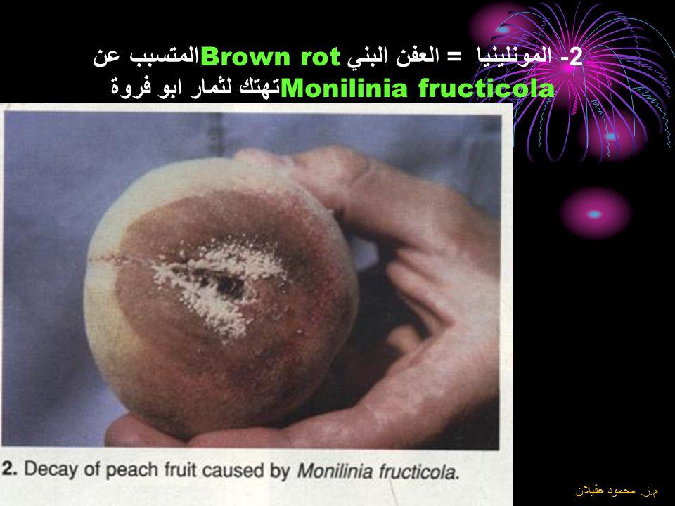 8\6\2004 م. ز. محمود عقيلان 1- المونلينيا العفن البني Brown Rot المتسبب عن Monilinia laxa لفحة الفروع والازهار للمشمش