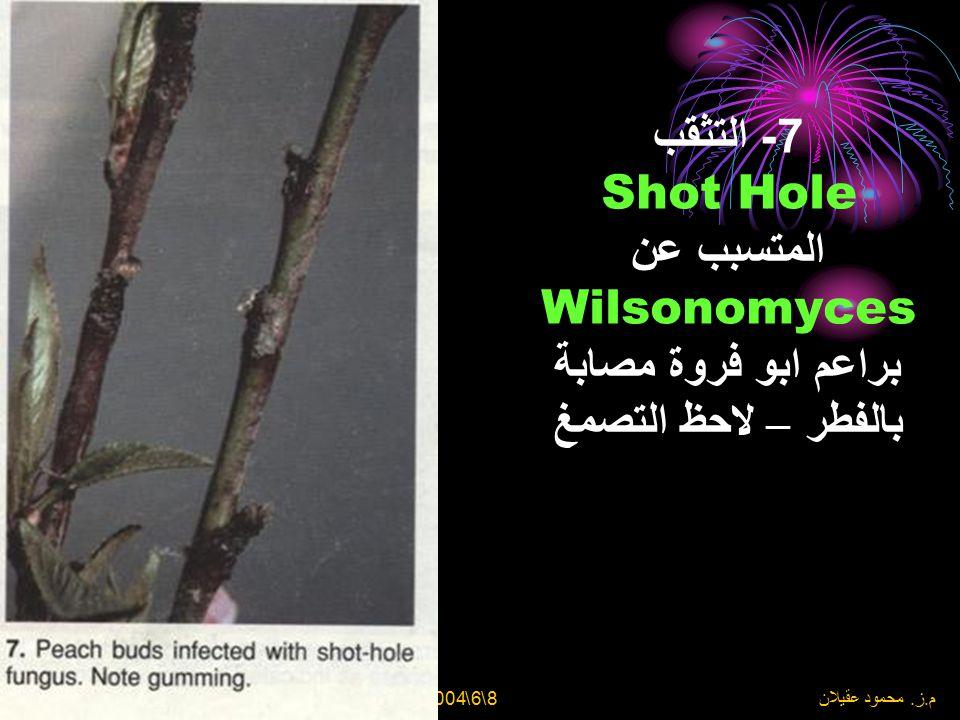 8\6\2004 م. ز. محمود عقيلان 6- التثقب = Shot Hole = المتسبب عن Wilsonomyces carpophilus وقديم كان يسمى (Coryneum – Clasterosporium – Stigmina) = على ث
