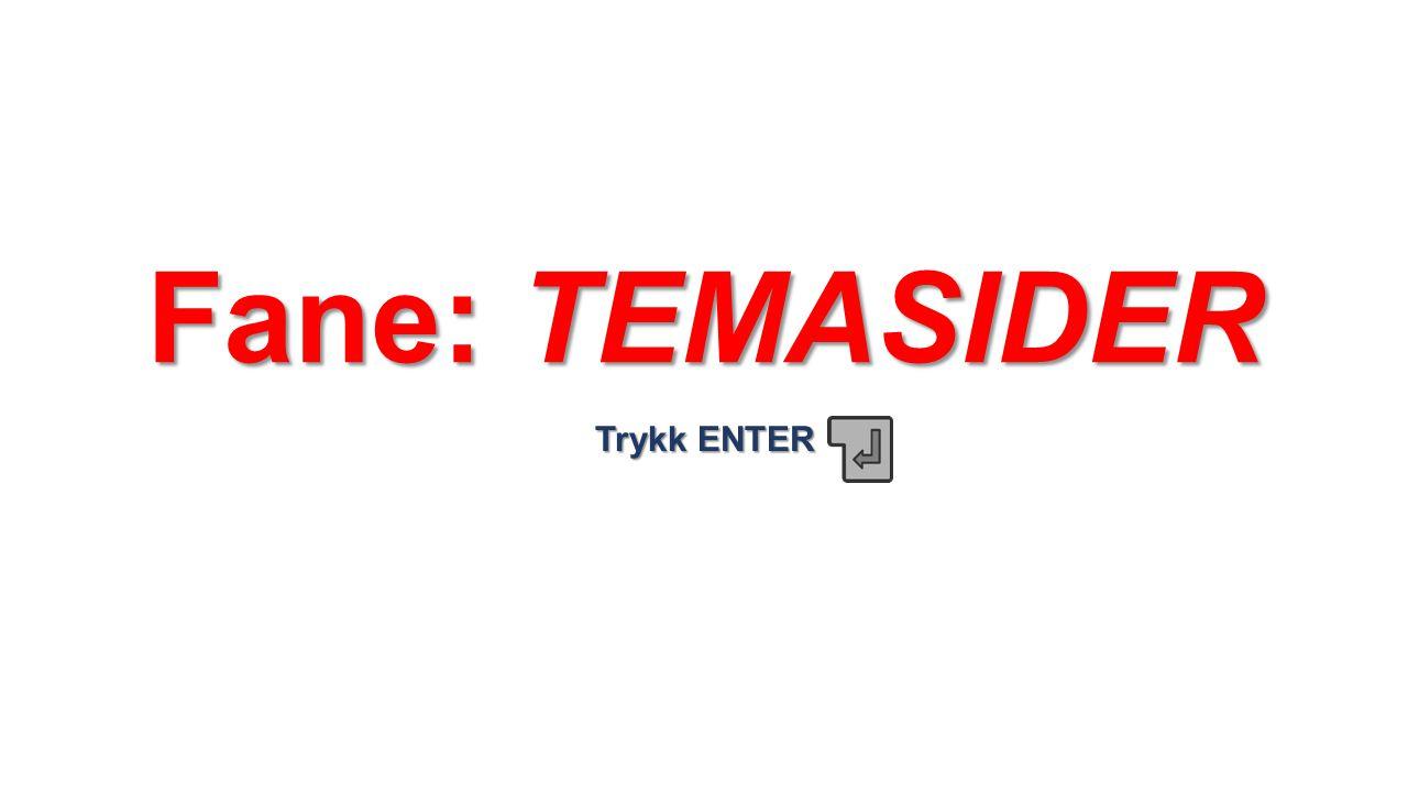 Fane: TEMASIDER Trykk ENTER