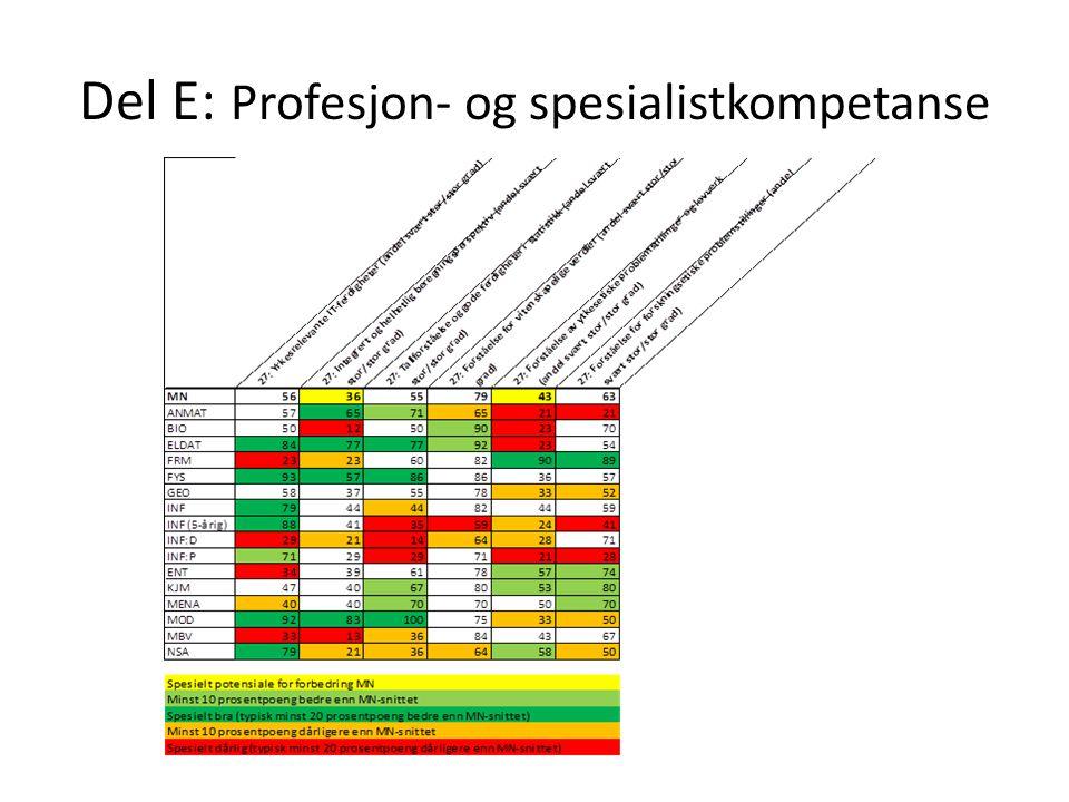 Del E: Profesjon- og spesialistkompetanse