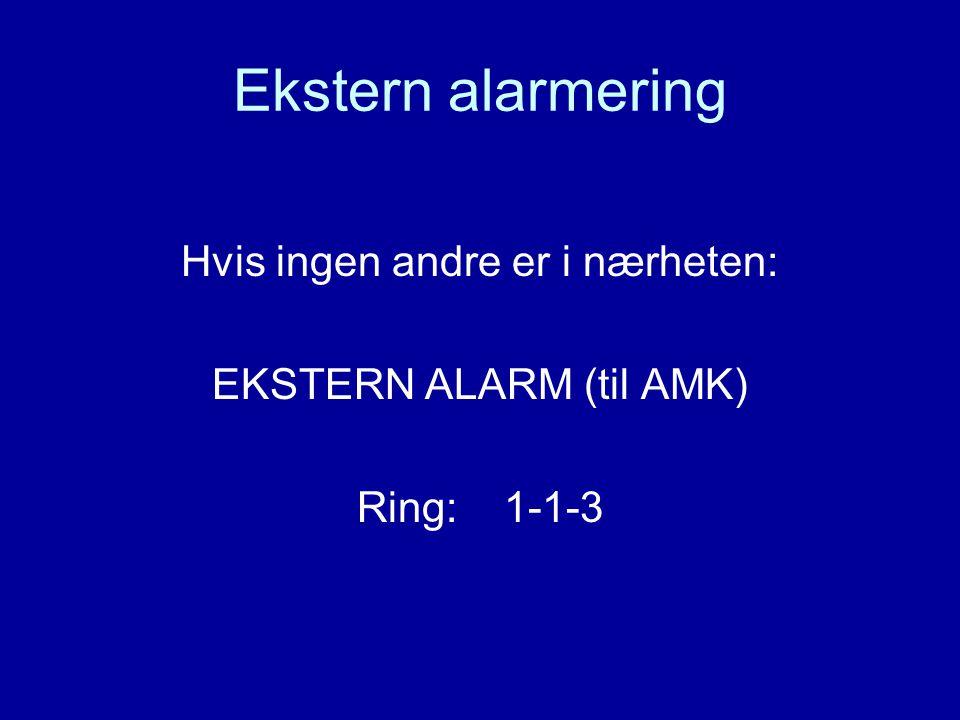 Ekstern alarmering Hvis ingen andre er i nærheten: EKSTERN ALARM (til AMK) Ring: 1-1-3