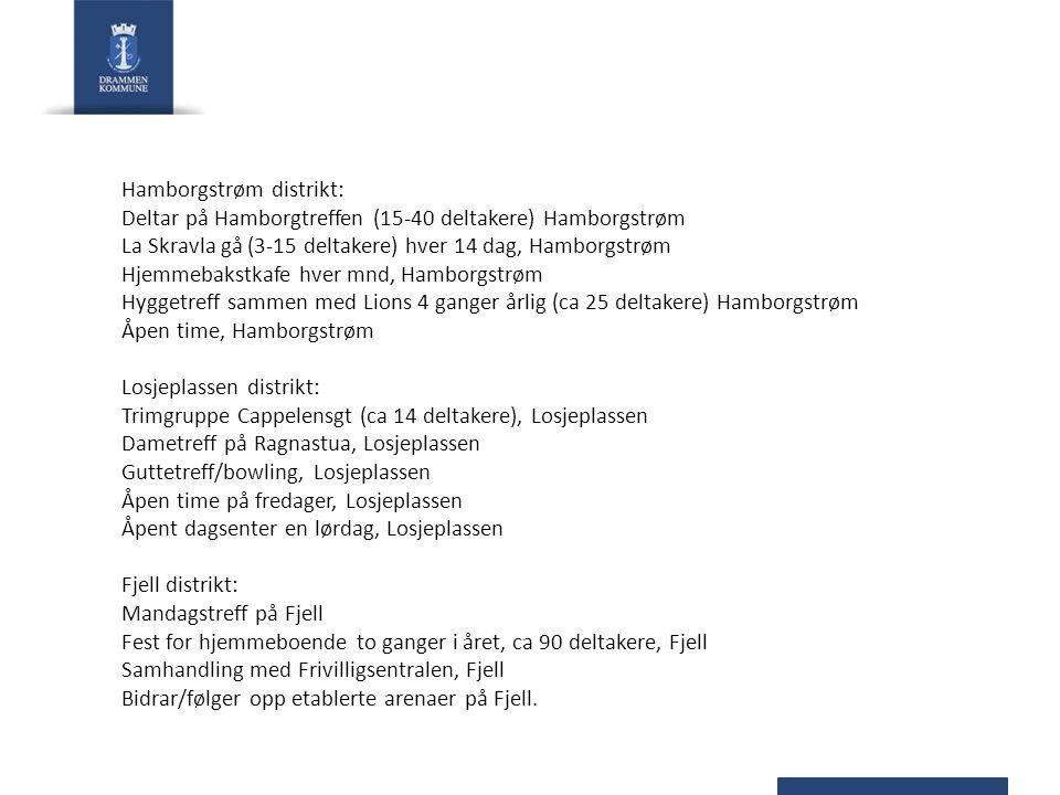 Hamborgstrøm distrikt: Deltar på Hamborgtreffen (15-40 deltakere) Hamborgstrøm La Skravla gå (3-15 deltakere) hver 14 dag, Hamborgstrøm Hjemmebakstkaf