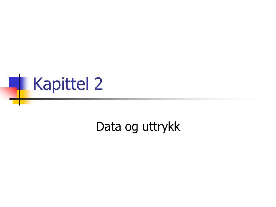 Kapittel 2 Data og uttrykk