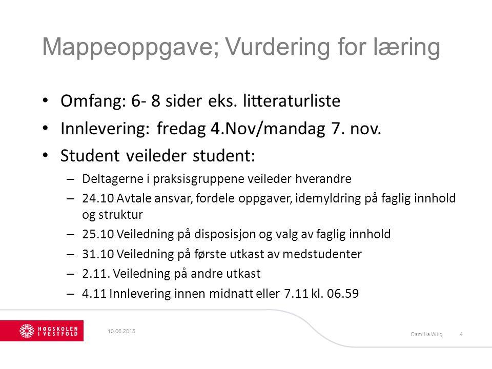 Mappeoppgave; Vurdering for læring Omfang: 6- 8 sider eks. litteraturliste Innlevering: fredag 4.Nov/mandag 7. nov. Student veileder student: – Deltag