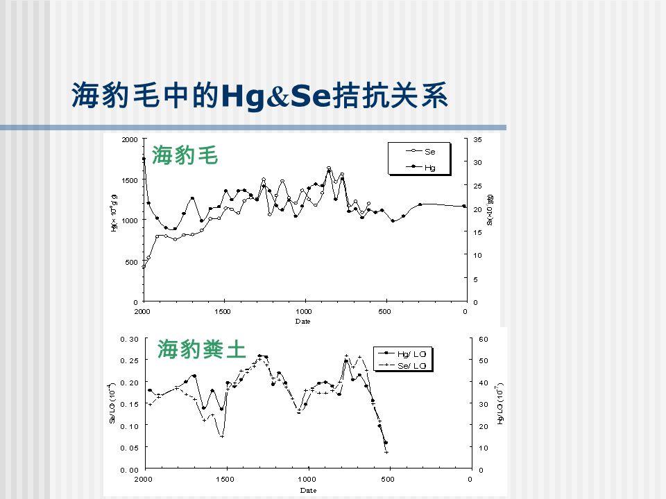 海豹毛中的 Hg & Se 拮抗关系 海豹毛 海豹粪土