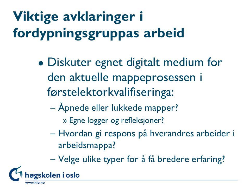 Viktige avklaringer i fordypningsgruppas arbeid l Diskuter egnet digitalt medium for den aktuelle mappeprosessen i førstelektorkvalifiseringa: –Åpnede eller lukkede mapper.