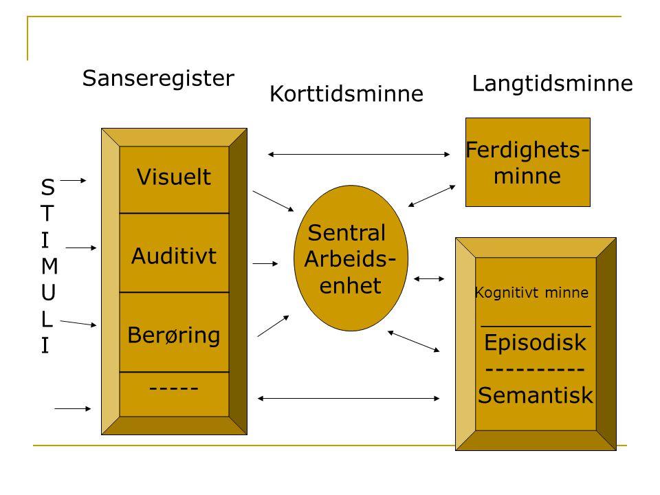Visuelt ________ Auditivt ________ Berøring ________ ----- Sanseregister STIMULISTIMULI Sentral Arbeids- enhet Ferdighets- minne Kognitivt minne _____