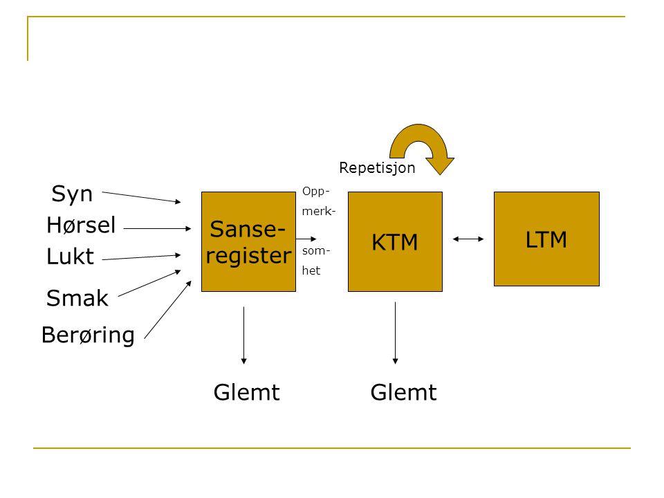Sanse- register KTM LTM Syn Hørsel Lukt Smak Berøring Glemt Repetisjon Opp- merk- som- het