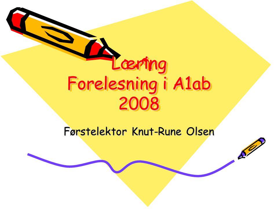 Læring Forelesning i A1ab 2008 Førstelektor Knut-Rune Olsen