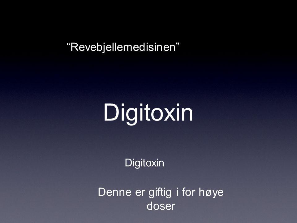 """Digitoxin """"Revebjellemedisinen"""" Digitoxin Denne er giftig i for høye doser"""