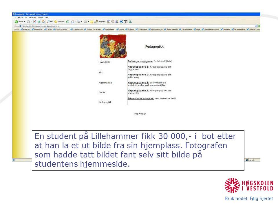 En student på Lillehammer fikk 30 000,- i bot etter at han la et ut bilde fra sin hjemplass. Fotografen som hadde tatt bildet fant selv sitt bilde på