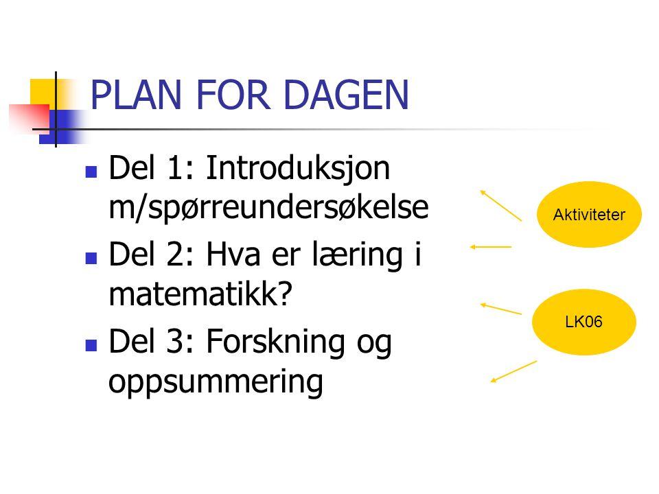 PLAN FOR DAGEN Del 1: Introduksjon m/spørreundersøkelse Del 2: Hva er læring i matematikk? Del 3: Forskning og oppsummering Aktiviteter LK06