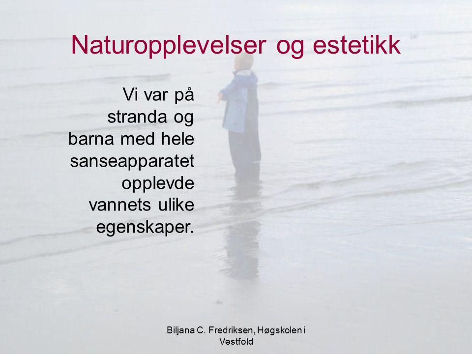 Biljana C. Fredriksen, Høgskolen i Vestfold Naturopplevelser og estetikk Vi var på stranda og barna med hele sanseapparatet opplevde vannets ulike ege