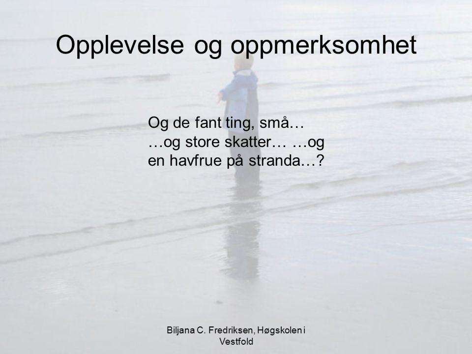 Biljana C. Fredriksen, Høgskolen i Vestfold Opplevelse og oppmerksomhet Og de fant ting, små… …og store skatter… …og en havfrue på stranda…?