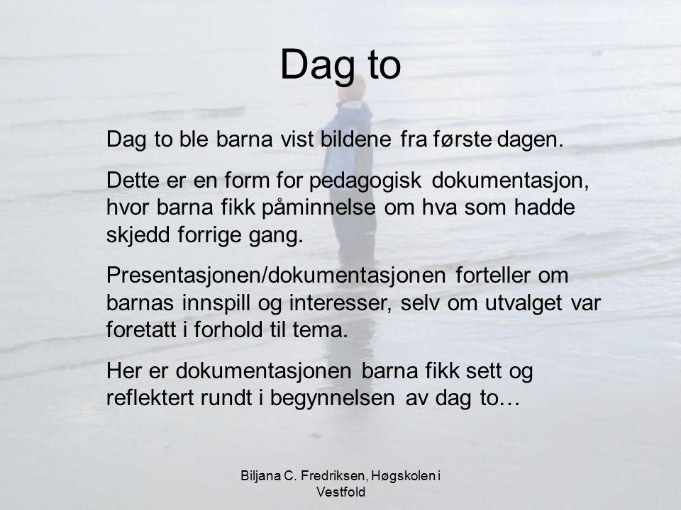 Biljana C. Fredriksen, Høgskolen i Vestfold Dag to Dag to ble barna vist bildene fra første dagen. Dette er en form for pedagogisk dokumentasjon, hvor