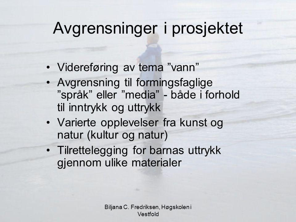 """Biljana C. Fredriksen, Høgskolen i Vestfold Avgrensninger i prosjektet Videreføring av tema """"vann"""" Avgrensning til formingsfaglige """"språk"""" eller """"medi"""